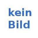 ALARM Bits Box 31 teilig mit BIT Halter mit Bajonettverschluss, Art. Nr. 41975